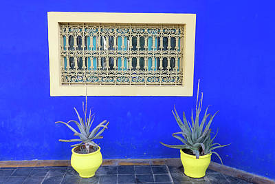 Outdoor Still Life Photograph - Morocco, Marrakech, Jacques Majorelle by Emily Wilson
