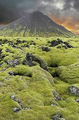 Moss-covered Lava Field Art Print