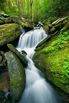 Photograph - Mossy Rocks On Cascade by Michael Blanchette