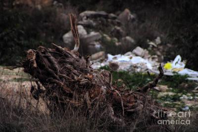 Digital Art - Mount Trashmore - Series Viii by Doc Braham