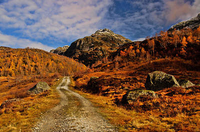 Fall Photograph - Mountain Road by Gry Thunes