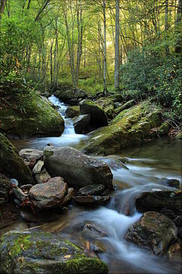Mountain Stream Art Print by Heavens View Photography