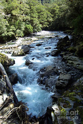 Photograph - Mountain Stream by John Potts