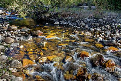 Photograph - Mountain Stream by Robert Bales