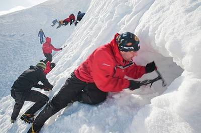 Mountaineers Building Snow Holes Print by Ashley Cooper