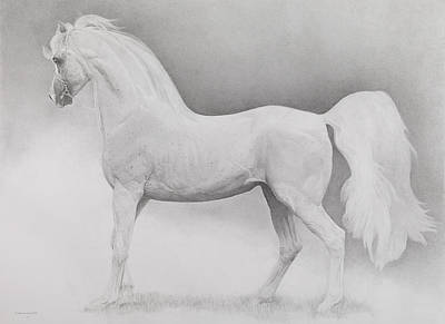 Running Horses Drawing - Moving Image by Emma Kennaway