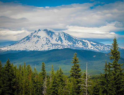 Mt. Adams From Indian Heaven Wilderness Art Print by Patricia Babbitt