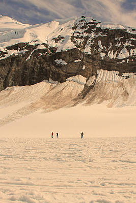 Photograph - Mt Denali Alaska by Ronald Olivier