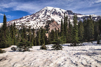 Photograph - Mt. Rainier by Stuart Gordon