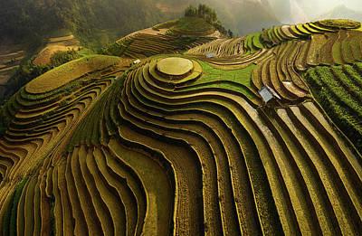 Rice Wall Art - Photograph - Mu Cang Chai - Vietnam by ????o T???n Ph??t