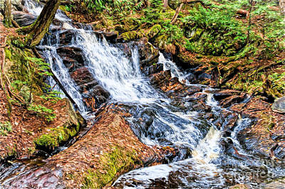 Photograph - Muskoka Waterfall by Les Palenik