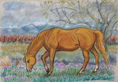 Pastel - My Horse Candy In Better Days by Dawn Senior-Trask