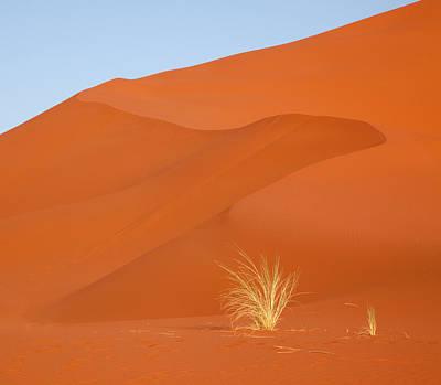 Bushman Photograph - Namibia, Namib-naukluft Park by Jaynes Gallery