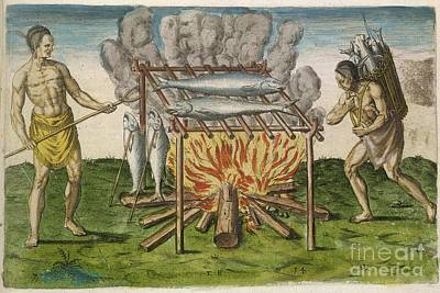 Grilled Fish Photograph - Native Americans Cooking, 16th Century by British Library
