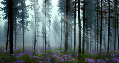 Nature's Beauty Art Print by Nina Bradica