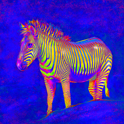 Digital Art - Neon Zebra 2 by Jane Schnetlage