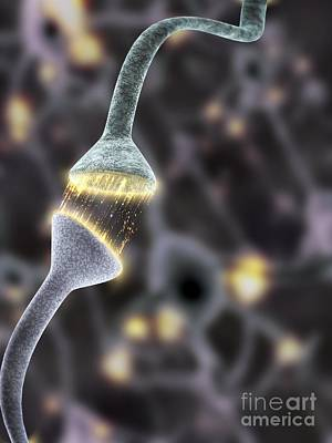 Photograph - Nerve Synapse, Artwork by Equinox Graphics