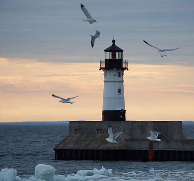 Duluth Photograph - New Beginnings by Alison Gimpel