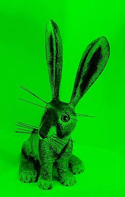 Photograph - New Mexico Rabbit Green by Rob Hans