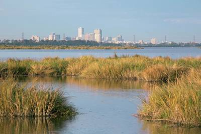 Wetlands Photograph - New Orleans And Surrounding Wetlands by Jim West