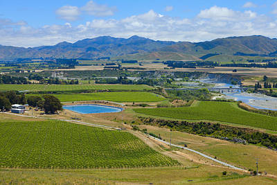 Photograph - New Zealand Wine Country  by Alexey Stiop