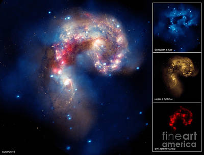 Heavenly Body Photograph - Ngc 4038ngc 4039, Antennae Galaxies by Science Source