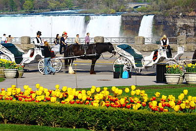 Photograph - Niagara Falls Carriage Ride by Rexford L Powell