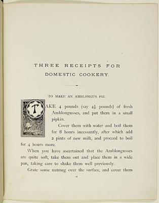 Stork Photograph - Nonsense Botany And Nonsense Alphabets by British Library