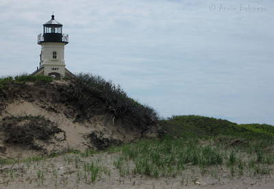 Photograph - North Light by Anne Babineau