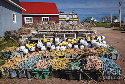 Netting Photograph - North Rustico by Elena Elisseeva