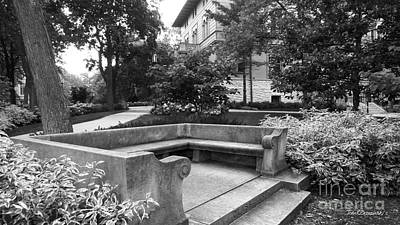 Photograph - Northwestern University Bench by University Icons