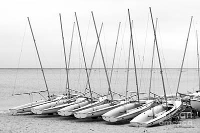 Photograph - Northwestern University Sailing Beach by University Icons