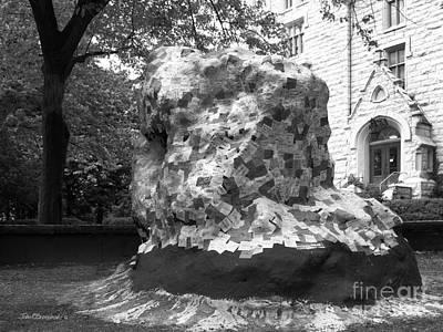 Photograph - Northwestern University The Rock by University Icons