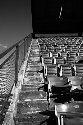 Shea Stadium Photograph - Nosebleeds by Frank Romeo