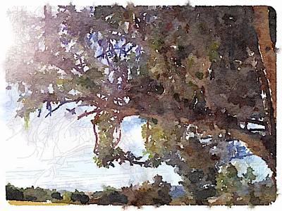Digital Art - Oak View by Shannon Grissom