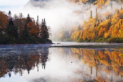 Laurentians Photograph - October Morning by Mircea Costina Photography