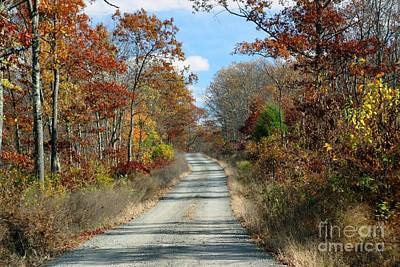 Photograph - Off The Beaten Path by Living Color Photography Lorraine Lynch