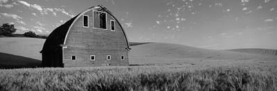 Old Barn In A Wheat Field, Palouse Art Print by Panoramic Images