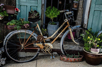 Photograph - Old Bicycle  by Dany Lison