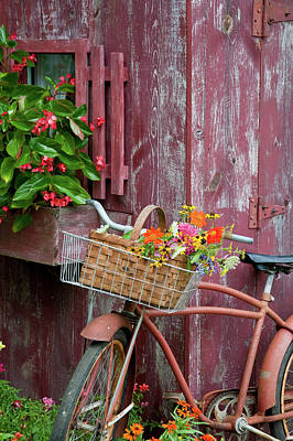 Begonia Photograph - Old Bicycle With Flower Basket Next by Panoramic Images