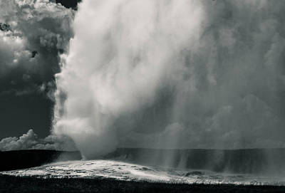 Photograph - Old Faithful by Angelique Rea