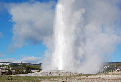 Old Faithful Geyser In Yellowstone National Park Art Print