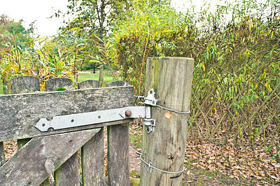 Outdoor Still Life Photograph - Old Gate by Tom Gowanlock