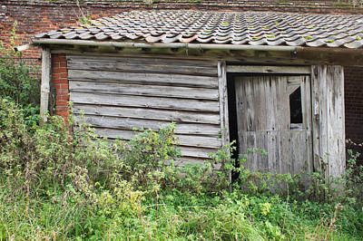 Unused Photograph - Old Hut by Tom Gowanlock