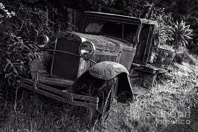 Photograph - Old Model T Ford In The Jungle Maui Hawaii by Edward Fielding