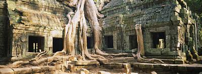 Banyan Photograph - Old Ruins Of A Building, Angkor Wat by Panoramic Images