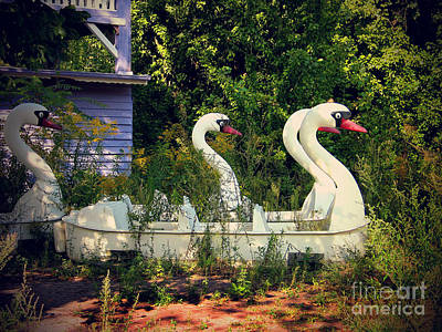 Old Swan Boats In Plaenterwald Berlin Art Print by Art Photography