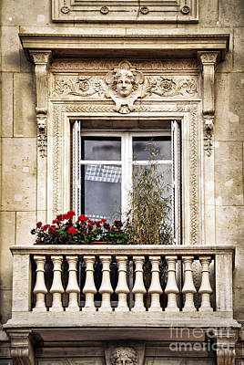 Flower Planter Photograph - Old Window by Elena Elisseeva