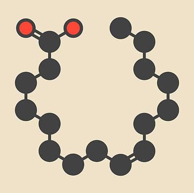 Omega Photograph - Omega-7 Fatty Acid Molecule by Molekuul