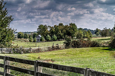 Photograph - On The Farm by Ken Frischkorn